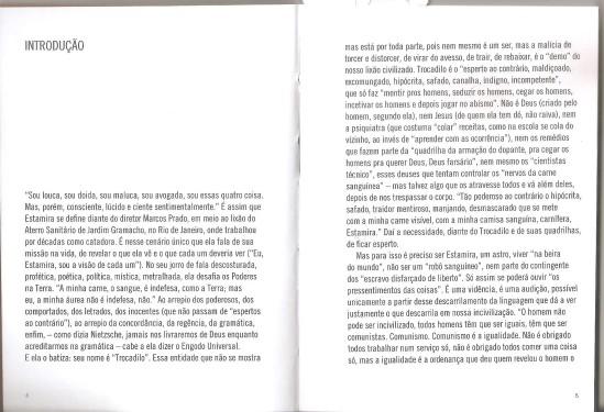 Estamira Fragmentos de um mundo em abismo n-1 edições 2013 introdução de Peter Pál Pelbart 01