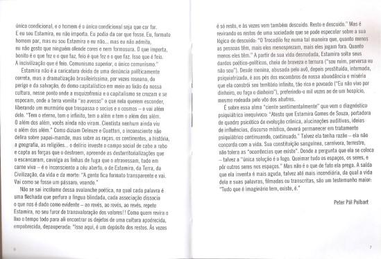 Estamira Fragmentos de um mundo em abismo n-1 edições 2013 introdução de Peter Pál Pelbart 02.jpg